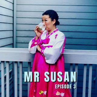 03. Mr Susan