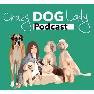 Who is The Crazy Dog Lady?