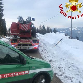 Abete cade sui cavi della rete elettrica a causa della neve. Intervento dei vigili del fuoco