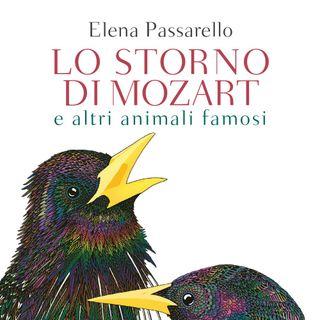 """Andrea Silvestri """"Lo storno di Mozart"""""""