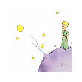 Il piccolo principe - Epilogo