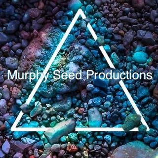 Murphy Seed -- Lalala official