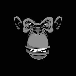 Radio The Monster Monkeys