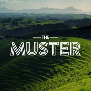 The Muster on Hokonui