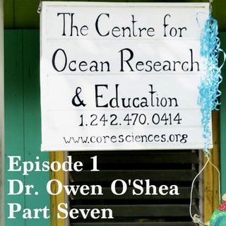 Stoa Scleractinia Ep 1, Part 7 - Dr Owen O'Shea on the problem with marine plastics
