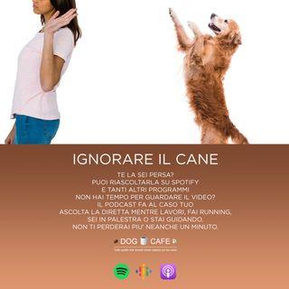 #9 - Ignorare il cane
