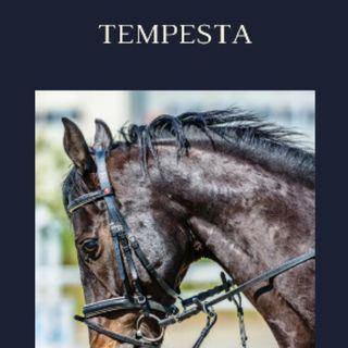 TEMPESTA 1/6 Part.