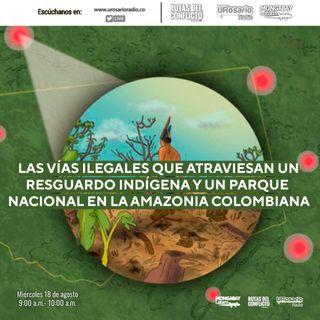 Vías ilegales en la Amazonía de Colombia