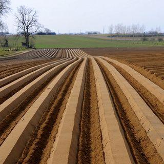 Informare i giovani sulla PAC, passaggio obbligato per un'agricoltura sostenibile