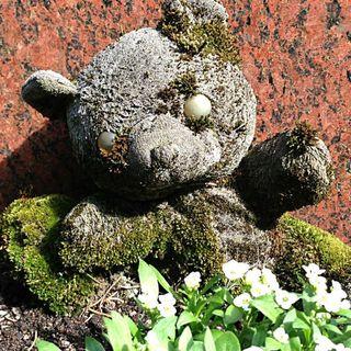 Kyrkogården – om säsongsarbetare på en kyrkogård