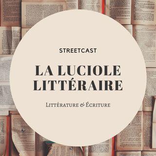 La Luciole Littéraire's show