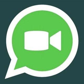 Whatsapp migliora le videochiamate - Radio Number One Tech