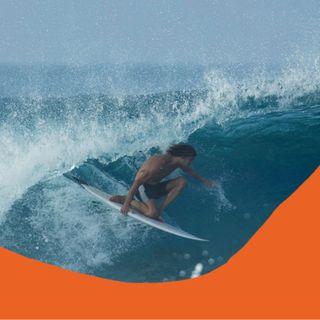 Chris Gentile's Beautiful Surf Film also stars Musicians