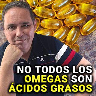ÁCIDOS GRASOS_01