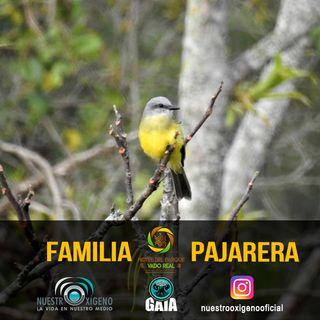 NUESTRO OXÍGENO La familia pajarera