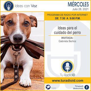 Ideas para el cuidado del perro