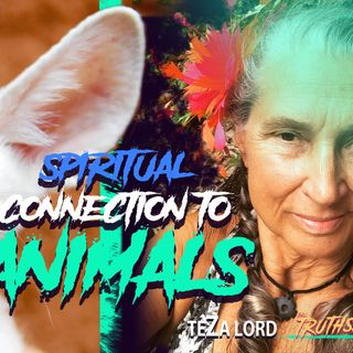 How To Be Taught By The Animals (Our Spiritual Role Models) - TeZa Lord
