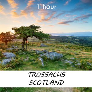 Trossachs Scotland | 1 hour FOREST Sound Podcast | White Noise | ASMR sounds for deep Sleep | Relax | Meditation | Colicky