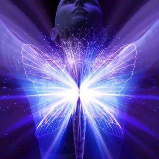 Buongiorno nella trasformazione interiore, oggi leggiamo la Tavola VII di Thoth❣️