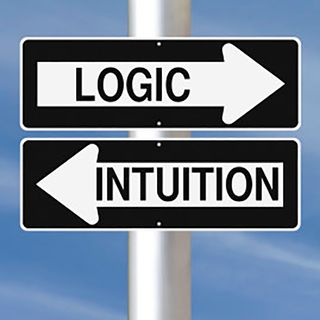 Intuition: Who? What? How? Why Not?