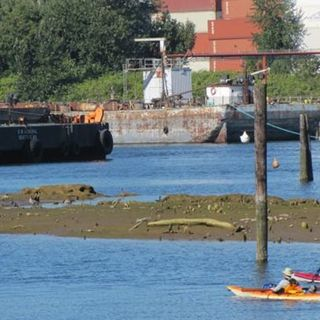 EarthFix Podcast: Duwamish River and the Clean Water Act http://earthfix.us/pod0719