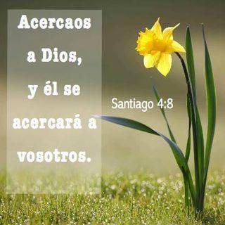 EL VERBO DE DIOS (JESÚS)