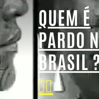 QUEM É PARDO NO BRASIL ? 🇧🇷 Lívia Zaruty  Etnia Brasileira