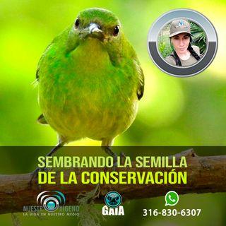 NUESTRO OXÍGENO Sembrando la semilla de la conservación - Alexandra Mañosca Lasso
