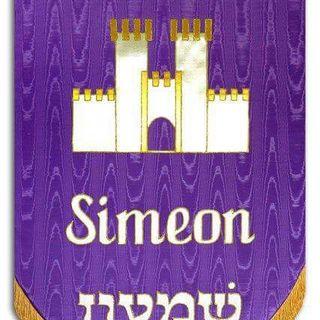 02 Tribu de Simeon