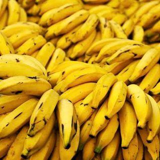 Episódio 61 - O mito, a banana, a tolice e o coronavírus