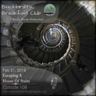 Escaping A House Of Stairs - Blackbird9