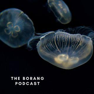 The Borang Podcast