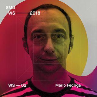 SMDWS18 - Mario Fedriga