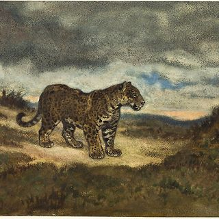 El Tigre de la Banda Oriental