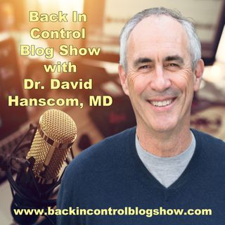 BICBS: Dr. David Hanscom - Enjoy Your Day – Today