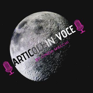 Episodio numero 3 (Articolo 5) - Turismo spaziale: sarà davvero il futuro della New Space Economy?