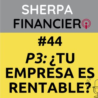 #44 P3 ¿Tu empresa es RENTABLE?