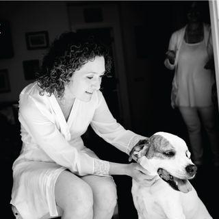 67_Cani al matrimonio