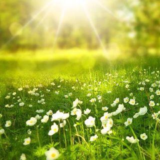 I raggi del sole spiegati ai non vedenti.