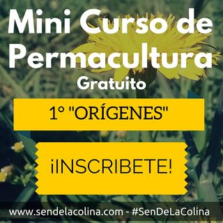 """Orígenes"" 1° entrega del Mini Curso de Permacultura Gratuito."