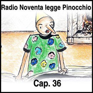 Pinocchio Capitolo 36