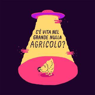 Il Grande Nulla Agricolo!
