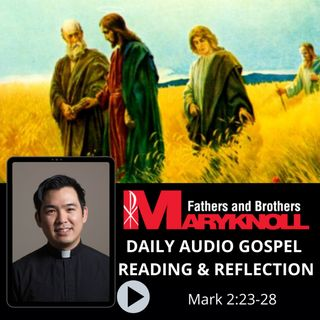 Mark 2:23-28, Daily Gospel Reading and Reflection