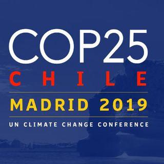 Como funcionan las Cumbres del Clima (COP), con Florent Marcellesi | Actualidad y Empleo Ambiental #32
