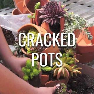 Cracked Pots - Morning Manna #2995