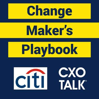 The Change Maker's Playbook with Amy Radin