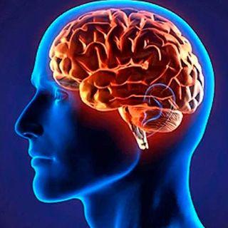 ¿Qué le pasa a nuestro cerebro cuando estamos en confinamiento?