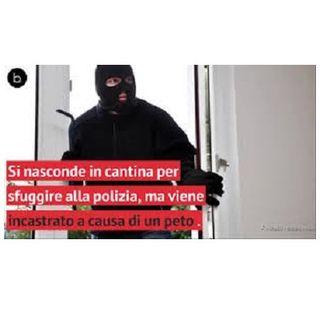 #sum Scoperto ladro a causa di un PETO!