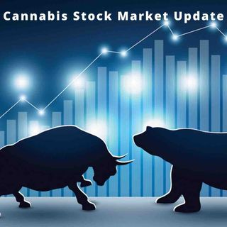 Cannabis Stock Market Update