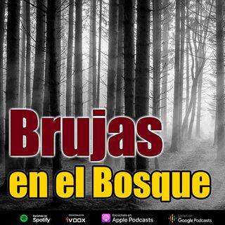 Brujas en el bosque